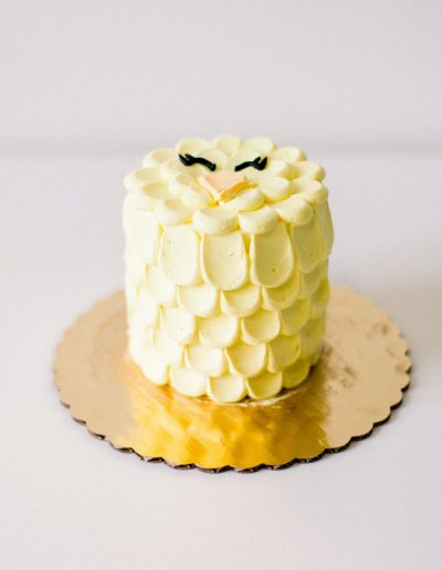 Little chick cake