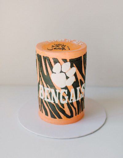 Double barrel Bengals cake